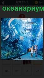 океанариум под водой, где ходят люди и смотрят на рыб