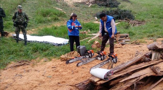 Seis personas fueron detenidas luego de operativo contra tala ilegal en Zipacón, Cundinamarca