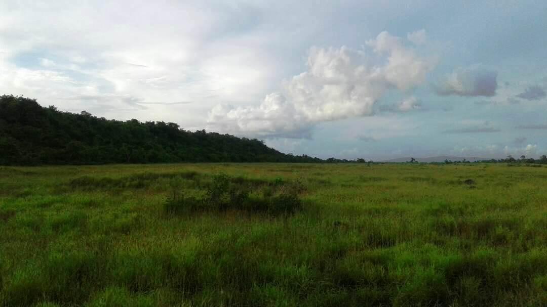 Padang Labulengke, Kadatua
