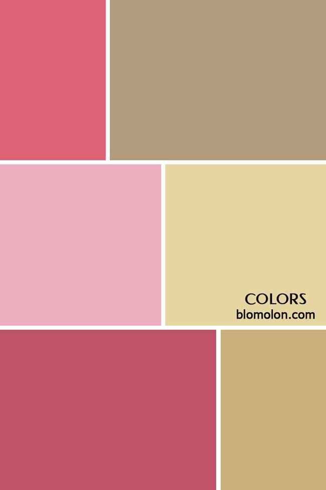 paletas_de_colores_personalizados_color
