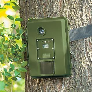 mata serangga lalat menginspirasi kamera pendeteksi gerak kamera pendeteksi gerak kamera pendeteksi gerak kamera pendeteksi gerak kamera pendeteksi gerak kamera pendeteksi gerak kamera pendeteksi gerak