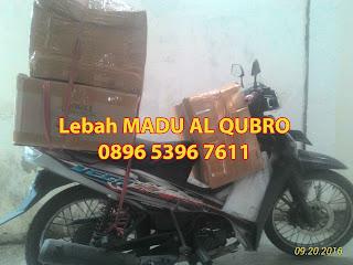 Agen Madu Asli Al Qubro, Supplier madu al qubro, distributor madu al qubro