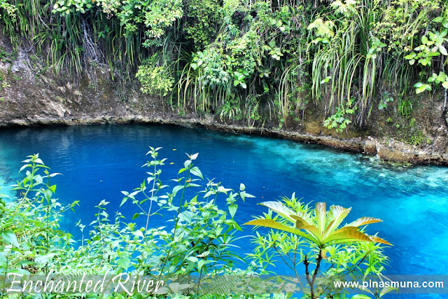 clear blue water of the enchanted river of Hinatuan Surigao del Sur