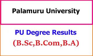Palamuru University Degree Examination Results