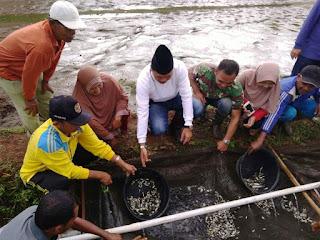Targetkan Jadi Sentra Benih Ikan, Irfendi Minta OPD Berinovasi