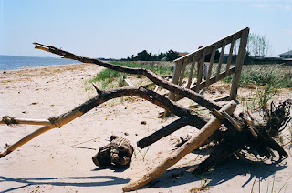 Driftwood and staircase on Maryland beach