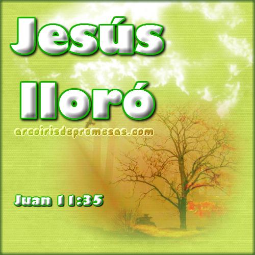Reflexiones cristianas con imágenes Jesús lloró