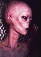 Uzaylı ve UFO Gerçekleri