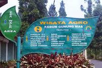3 - Tempat Wisata Di Puncak Bogor - Agro Wisata Gunung Mas