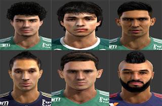 Mini Facepack Palmeiras 2016 Pes 2013