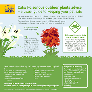 http://www.cats.org.uk/uploads/documents/COM_3113_Floral_Outdoor_v2.pdf