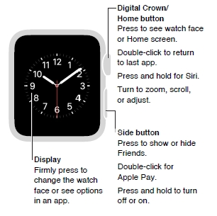 Apple watch manual user guide.