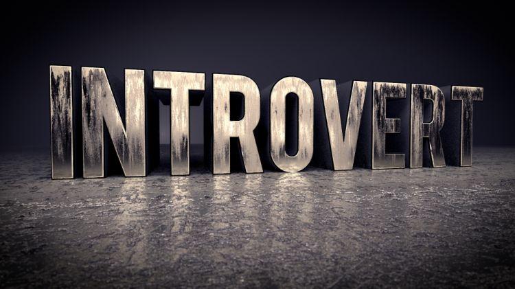 Seorang Introvert Bermimpi Menjadi Pemimpin