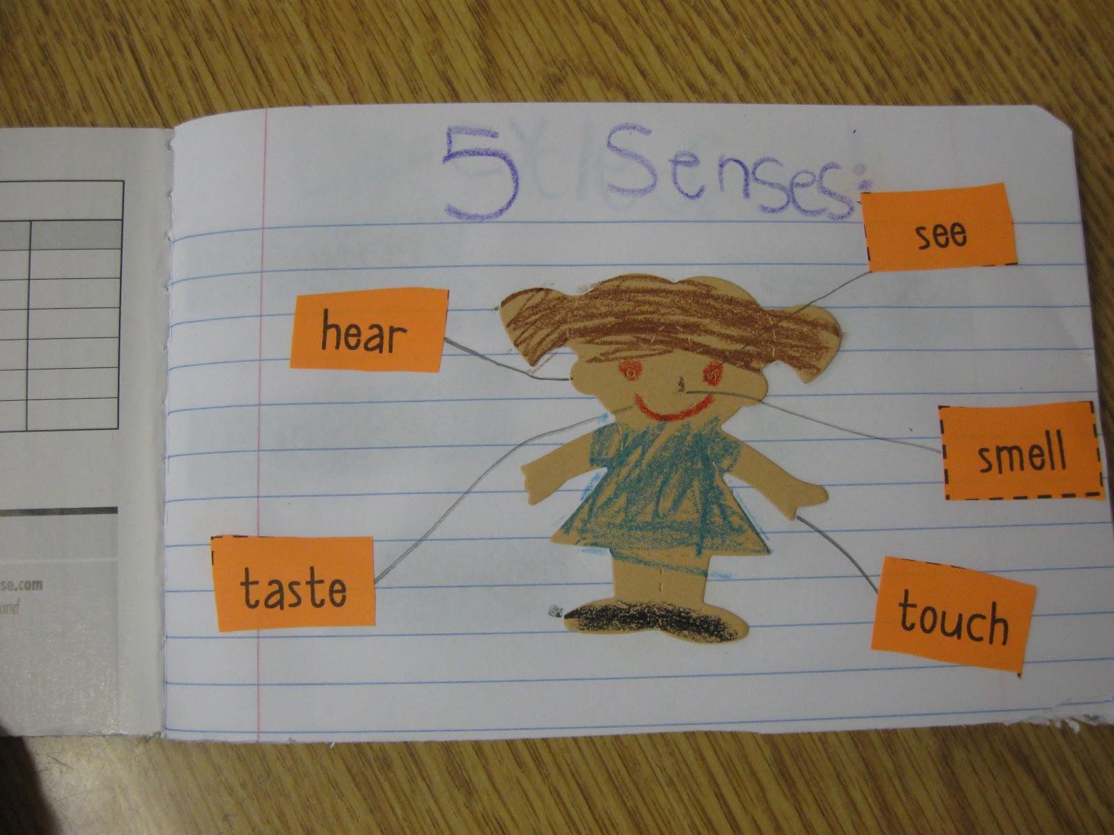 Teaching Learning Amp Loving Science Notebooks