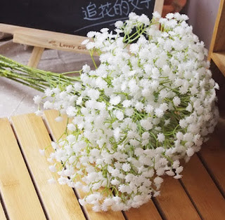 legenda bunga baby breath,harga bunga baby breath,bunga edelweis,bunga baby breath arti,cara menanam bunga baby breath,simbol bunga baby breath,bibit bunga baby breath,bunga baby breath di indonesia,