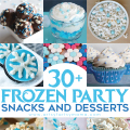 30+ Frozen Party Recipes