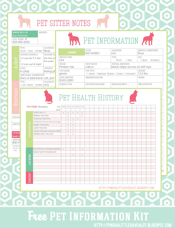 pet grooming business plan helper sampler and antique