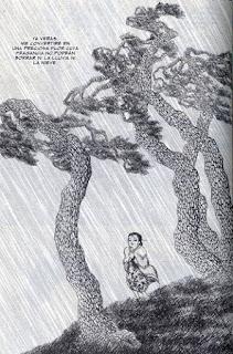 """Viñeta del cómic """"Historias color tierra"""", de Kim Dong-Hwa"""