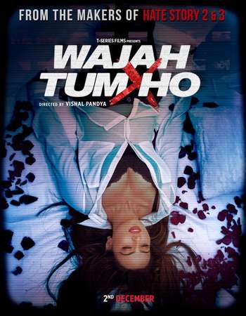 Poster Of Wajah Tum Ho 2016 Hindi 180MB HDRip HEVC Mobile ESubs Watch Online Free Download downloadhub.net