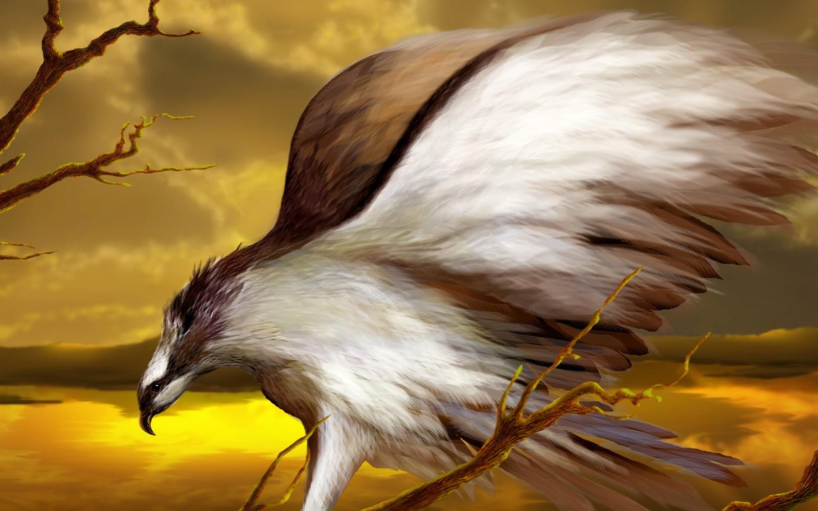 Eagle Full HD Wallpapers, Eagle Wallpapers, Eagle HD ...