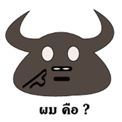 Buffalo hehe