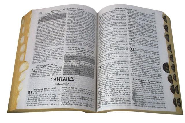 biblia.entendimentobiblico.com