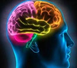 Apakah Penyakit Epilepsi Menular