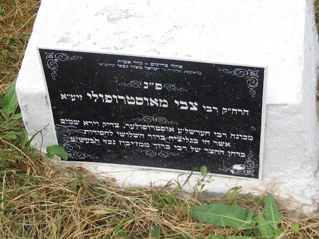מצבת קברו של הרשלה?? צילום: דוד אסף