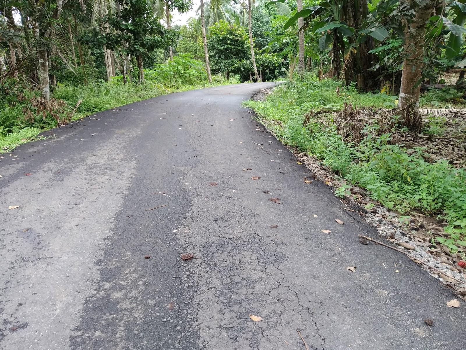 PT. Monalisa Jaya Harus Bertanggung Jawab Atas Proyek Amburadul Di Desa Kokole