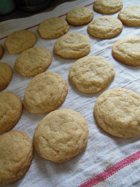 Whole Grain Quick and Easy Sugar Cookies, made with Whole Grain Ivory Flour.