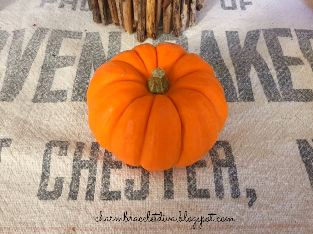 mini pumpkin on vintage grainsack