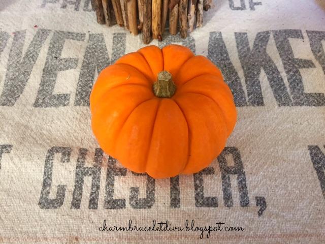 mini pumpkin on vintage grainsack