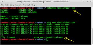 Instalasi dan konfigurasi DNS server pada Linux