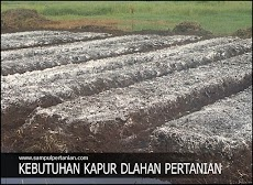 Jumlah kebutuhan Kapur Dolomit sesuai pH tanah