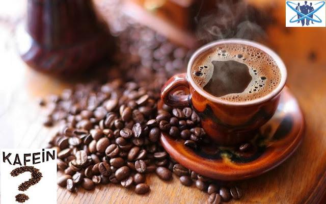Kafein Oranı En Yüksek İçecekler Arasında İlk 10 Gıda Maddesi - Kurgu Gücü
