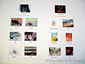 Halloween themed living vs. nonliving activity