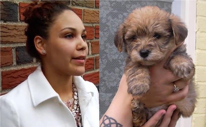 Dominicana despojada de su perro por supuesta  crueldad pide que le devuelvan  animal