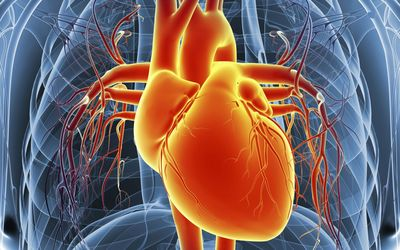 understanding Cardiomegaly