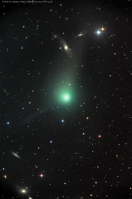 Comet Johson - cometa C-2015 V2 - Rolando Ligustri - iTelescope