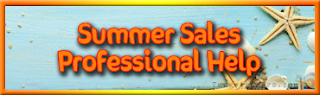 Summer Sales Help - Professional Services - Targeting Pro Marketing