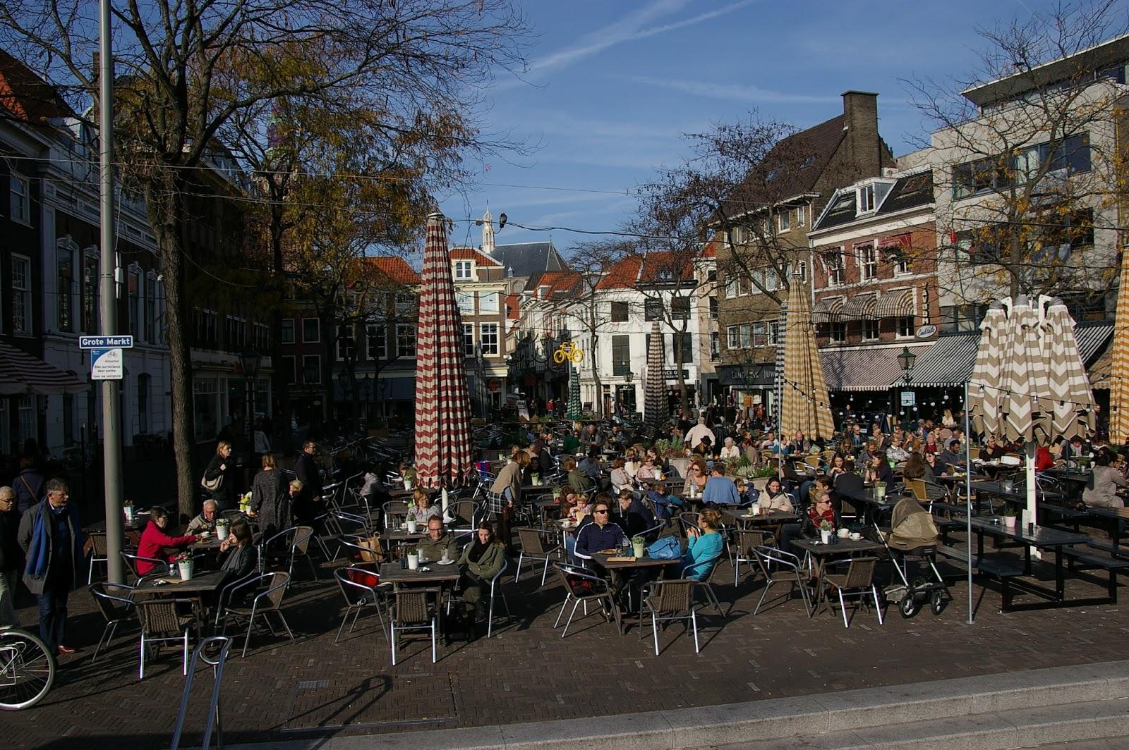 mieszkać w Holandii