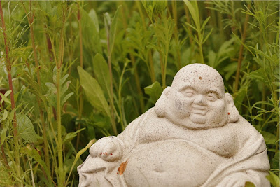 Buddha in the grass
