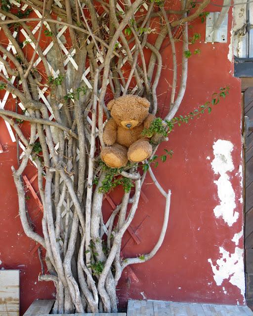 A lost teddy bear, Scali delle Cantine, Livorno