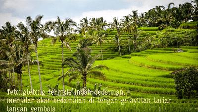 Puisi Tentang Kerinduan Pada Kampung Halaman