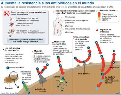 Toda la información sobre la resistencia a los antibioticos