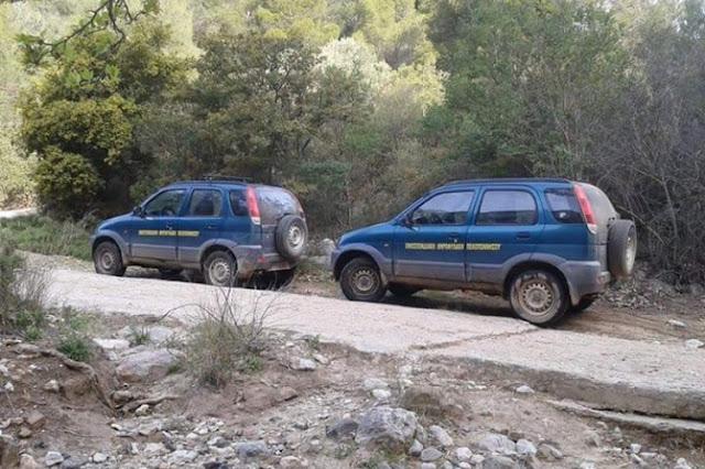 Δυο συλλήψεις στην Αργολίδα για παράνομο κυνήγι αγριόχοιρου