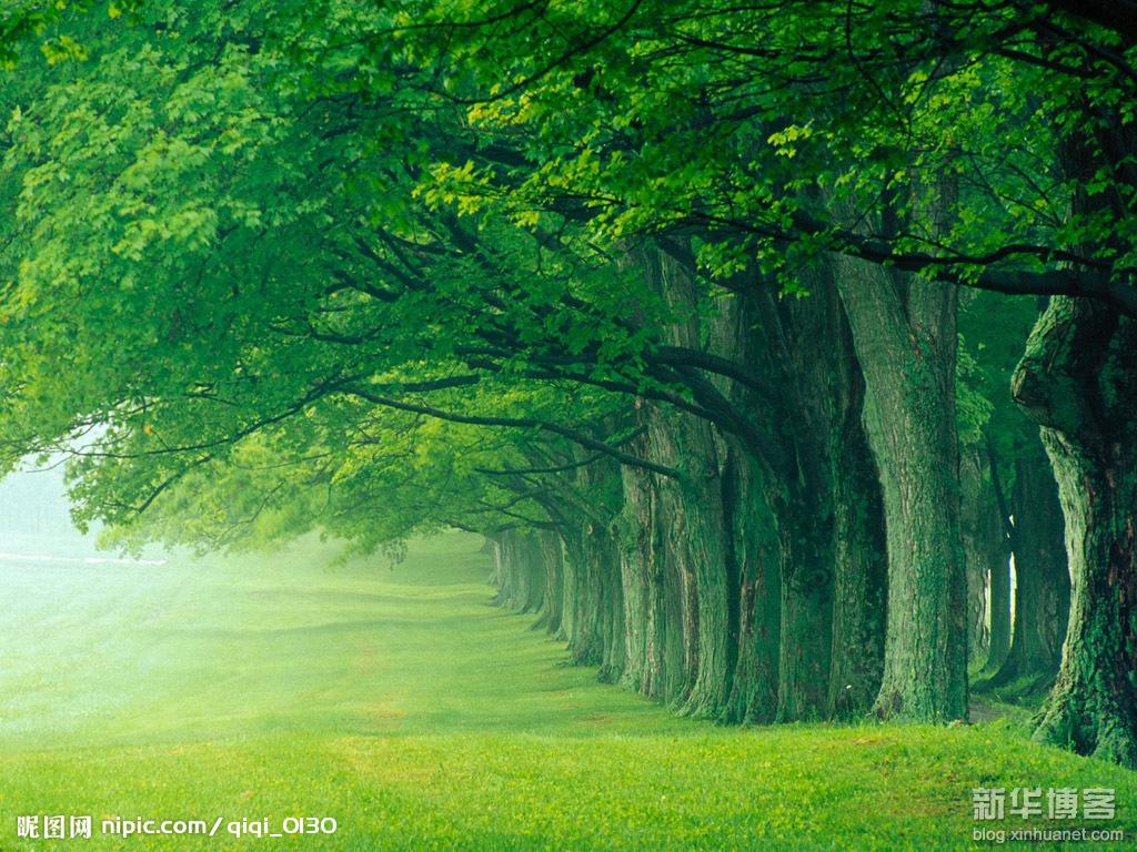 Leo1234: 大自然