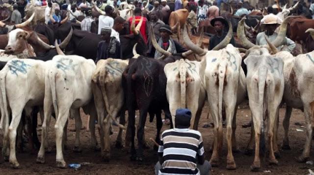 Cattle dealers threaten nationwide strike