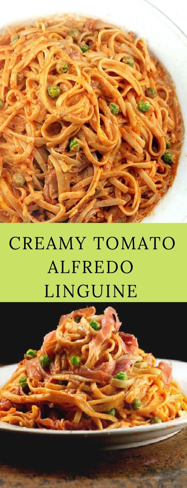 Creamy Tomato Alfredo Linguine #PASTA