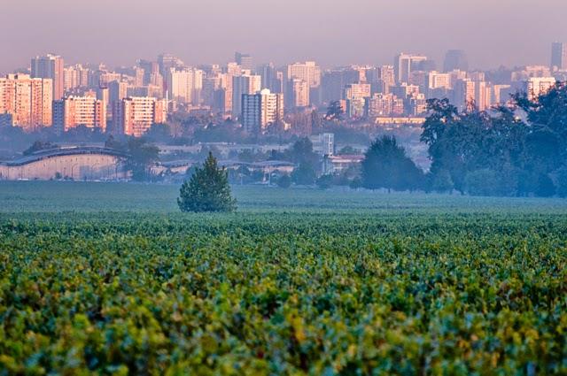 Cousiño Macul em Santiago no Chile